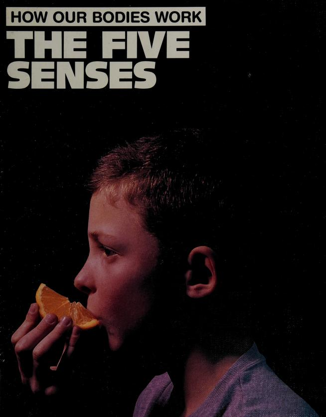 The five senses by Jacqueline Dineen